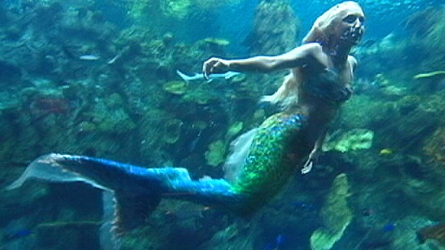 4 SIGNS TO UNDERSTAND YOU'RE UNDER ATTACK BY MERMAIDS